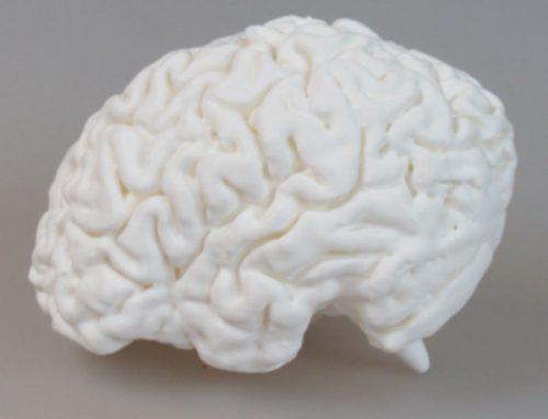 Neurologie Print